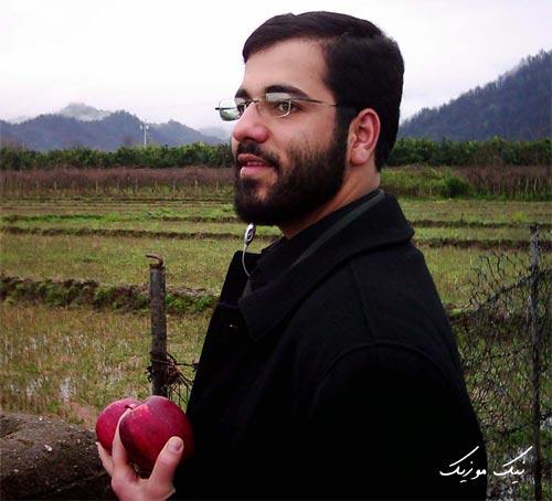 سیب سرخی گلچین