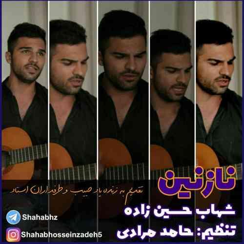 دانلود آهنگ جدید شهاب حسین زاده به نام نازنین عکس جدید شهاب حسین زاده عکس ها و موزیک های جدید شهاب حسین زاده