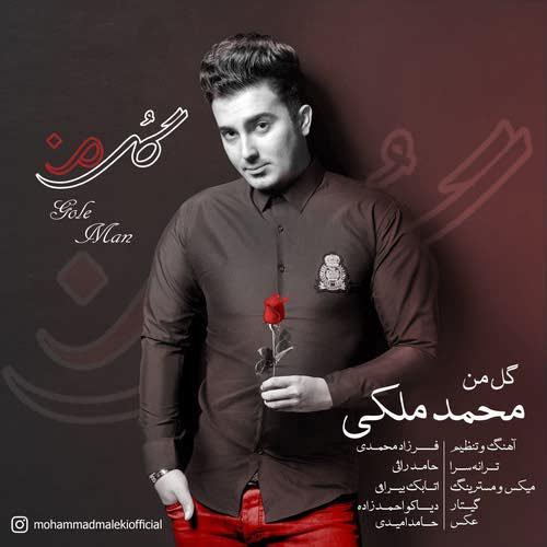 دانلود آهنگ جدید محمد ملکی به نام گل من عکس جدید محمد ملکی عکس ها و موزیک های جدید محمد ملکی
