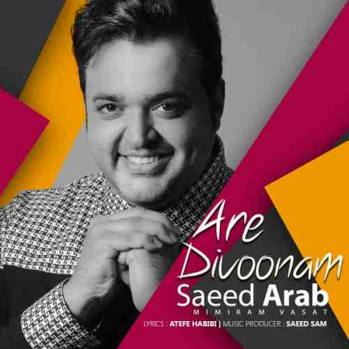 دانلود آهنگ جدید سعید عرب به نام آره دیوونم عکس جدید سعید عرب عکس ها و موزیک های جدید سعید عرب