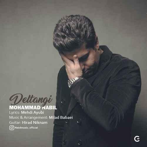 دانلود آهنگ جدید محمد نبیل به نام دلتنگی عکس جدید محمد نبیل عکس ها و موزیک های جدید محمد نبیل