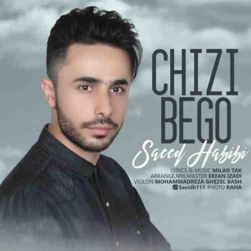 دانلود آهنگ جدید سعید حبیبی به نام چیزی بگو عکس جدید سعید حبیبی عکس ها و موزیک های جدید سعید حبیبی
