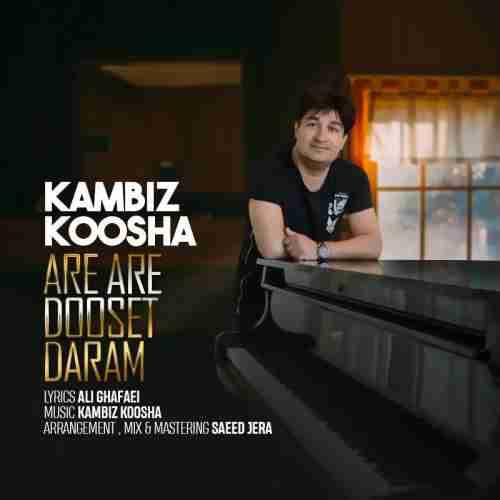 دانلود آهنگ جدید کامبیز کوشا به نام آره آره دوست دارم عکس جدید کامبیز کوشا عکس ها و موزیک های جدید کامبیز کوشا