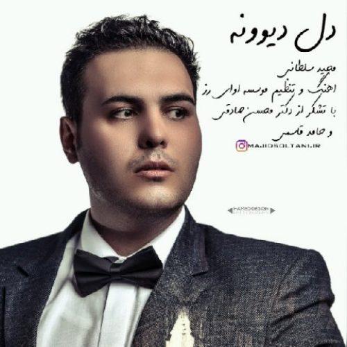 دانلود آهنگ جدید مجید سلطانی به نام دل دیوونه عکس جدید مجید سلطانی عکس ها و موزیک های جدید مجید سلطانی