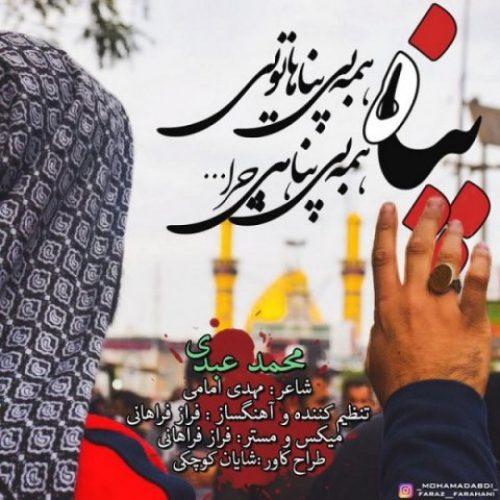 دانلود آهنگ جدید محمد عبدی به نام پناه عکس جدید محمد عبدی عکس ها و موزیک های جدید محمد عبدی