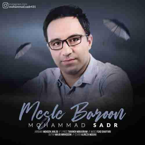 دانلود آهنگ جدید محمد صدر به نام مثل بارون عکس جدید محمد صدر عکس ها و موزیک های جدید محمد صدر