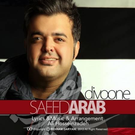 دیوونه از سعید عرب