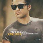دانلود آهنگ جدید احمد سعیدی به نام میشه بری