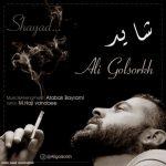 دانلود آهنگ جدید علی گلسرخ به نام شاید