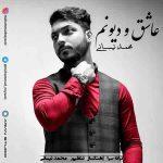 دانلود آهنگ جدید محمد نیسانی به نام عاشق و دیونم
