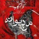 دانلود آهنگ جديد گروه دارکوب و احسان خواجه امیری به نام منِ دیوانه