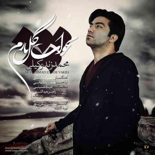 دانلود آهنگ جدید محمد زندوکیلی به نام بخواب گل نازم ، آهنگ بخواب گل نازم با صدای محمد زندوکیلی + متن آهنگ بخواب گل نازم از محمد زندوکیلی