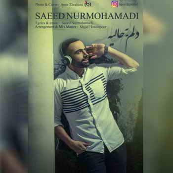 دانلود آهنگ جدید سعید نورمحمدی به نام دلم یه حالیه