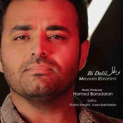 دانلود آهنگ جدید میثم ابراهیمی به نام بی دلیل عکس جدید میثم ابراهیمی عکس ها و موزیک های جدید میثم ابراهیمی