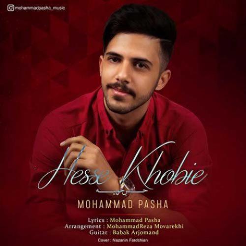 دانلود آهنگ جدید محمد پاشا به نام حس خوبیه عکس جدید محمد پاشا عکس ها و موزیک های جدید محمد پاشا