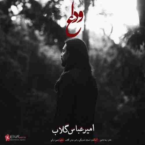 دانلود آهنگ جدید امیر عباس گلاب به نام وداع عکس جدید امیر عباس گلاب عکس ها و موزیک های جدید امیر عباس گلاب