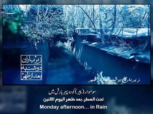 دوشنبه علی فانی