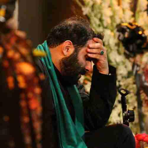 هر چی بیشتر میگم حسین حاج سید مهدی میرداماد