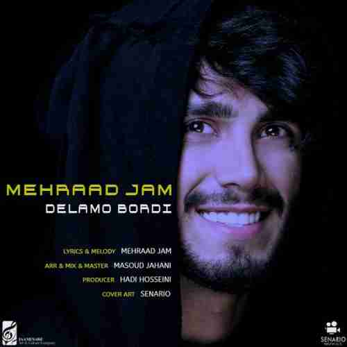 دانلود آهنگ جدید مهراد جم به نام دلمو بردی عکس جدید مهراد جم عکس ها و موزیک های جدید مهراد جم