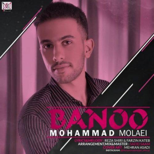 دانلود آهنگ جدید محمد ملائی به نام بانو عکس جدید محمد ملائی عکس ها و موزیک های جدید محمد ملائی
