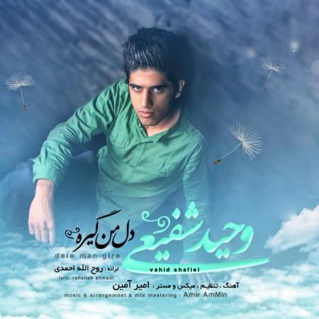 Vahid Shafiei - Dele Man Gire